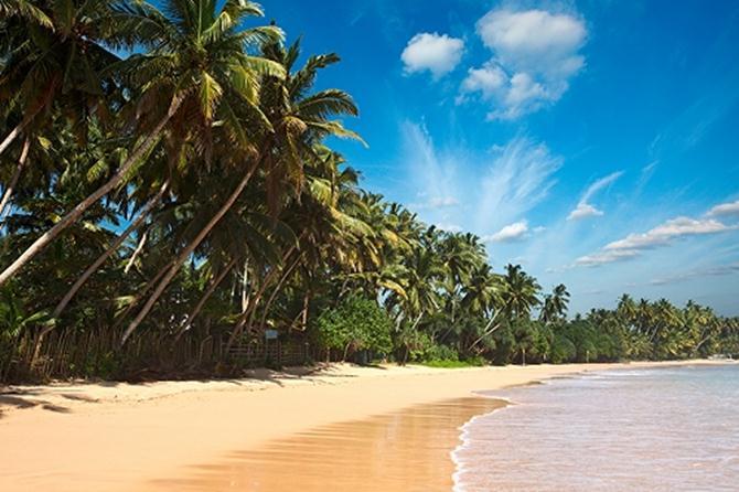 Фото Шри-Ланки
