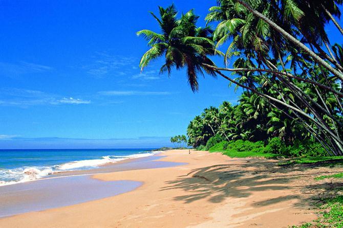 Туры на Шри-Ланку